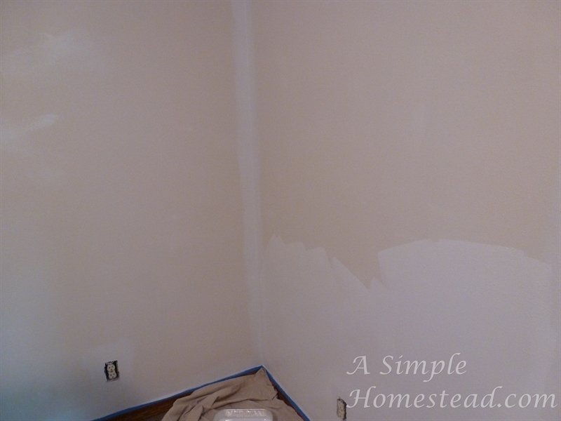 ASimpleHomestead.com - new paint going up