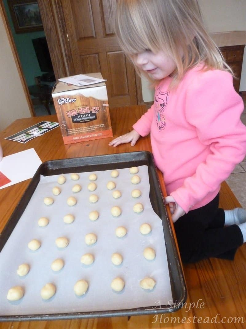 Little chick eyeing up unbaked cookies