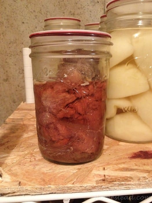canned venison