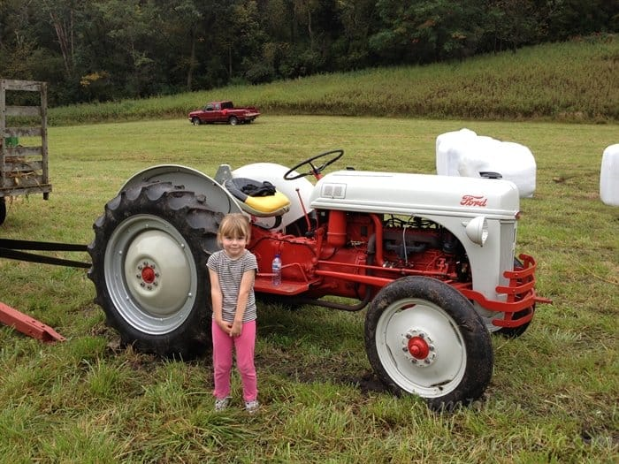 ASimpleHomestead.com - Ford 8N tractor