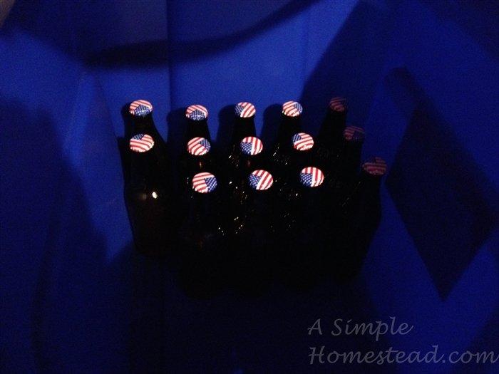 ASimpleHomestead.com - apple soda