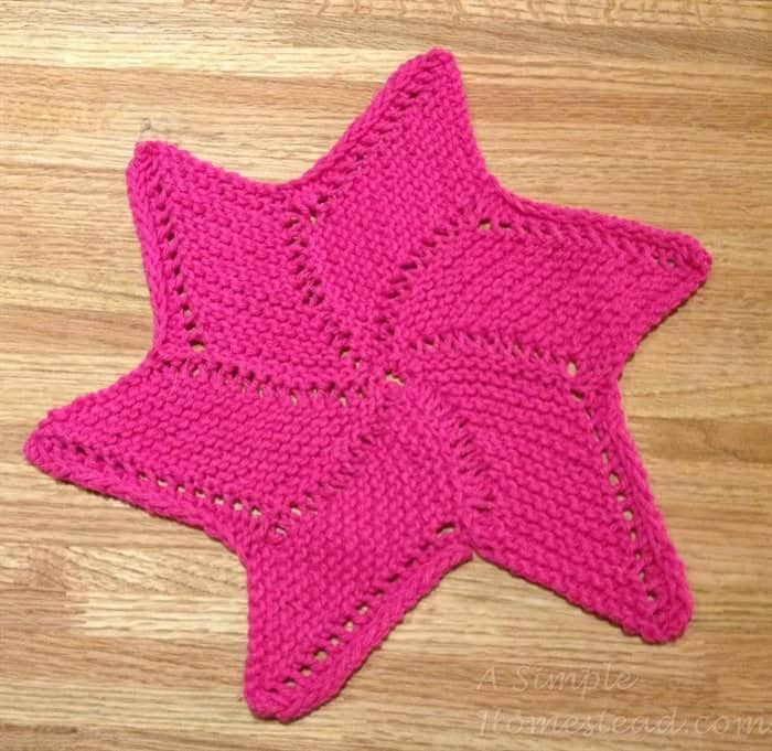 ASimpleHomestead.com - Starfish washcloth