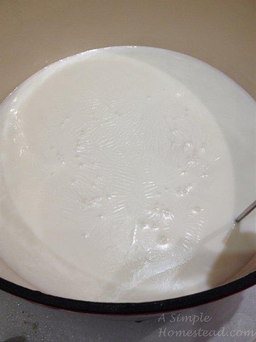 ASimpleHomestead.com - yogurt bubbling
