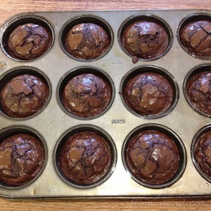 ASimpleHomestead.com - brownie cupcakes