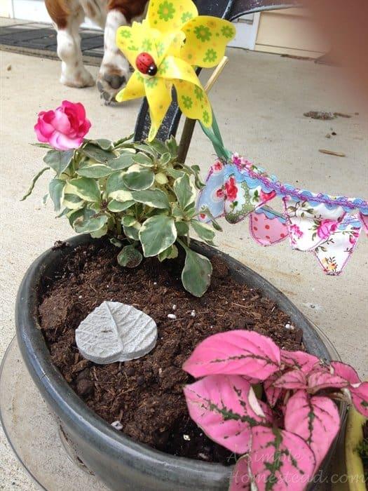 ASimpleHomestead.com - fairy plants