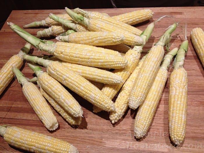 ASimpleHomestead.com - corn on cob