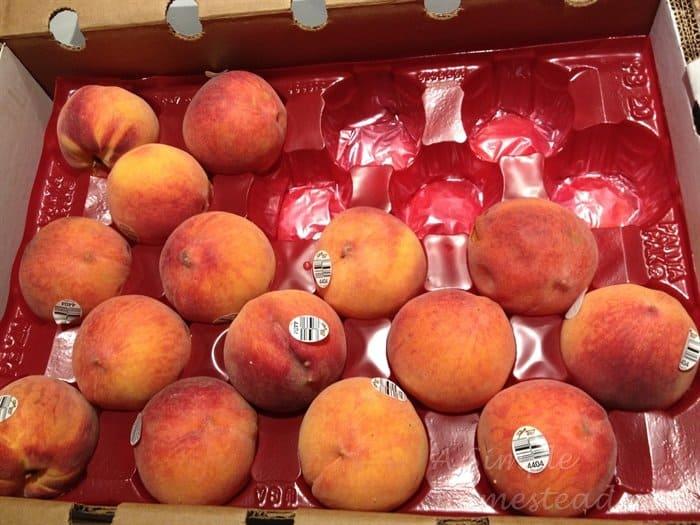 ASimpleHomestead.com - peaches