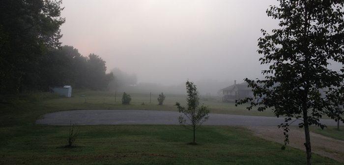ASimpleHomestead.com - foggy morning