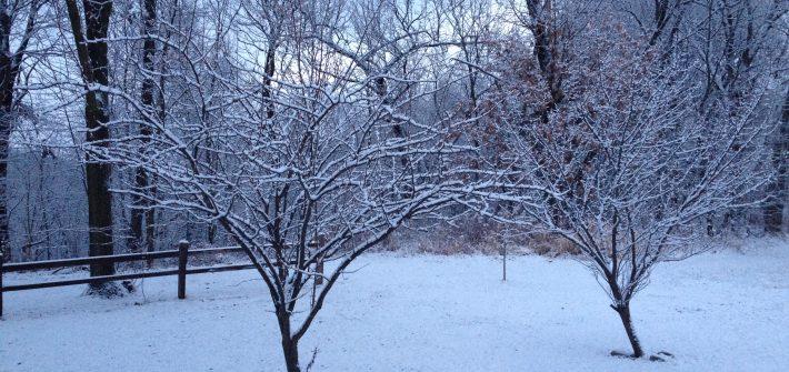 ASimpleHomesread.com - first December Snow