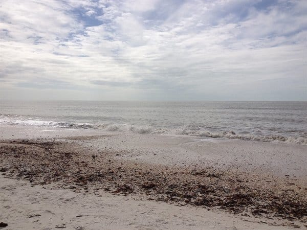 ASimpleHomestead.com - Barefoot Beach, Florida