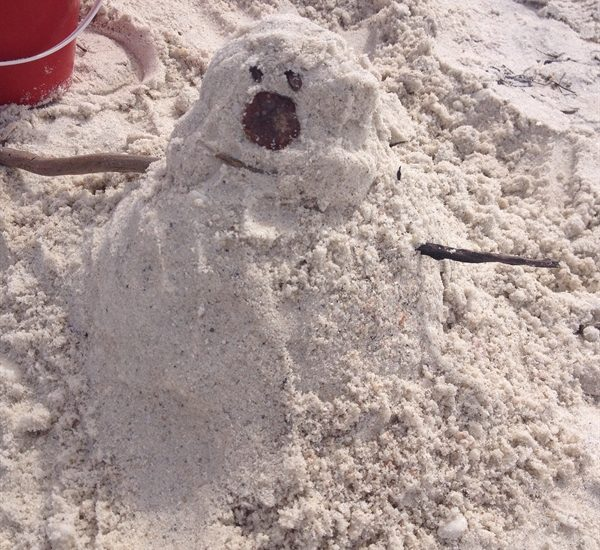 ASimpleHomestead.com - Do you want to build a sandman?