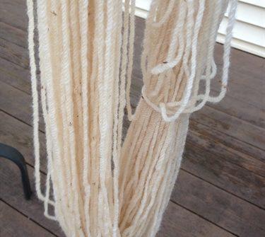 ASimpleHomestead.com - black bean dyeing (fail)