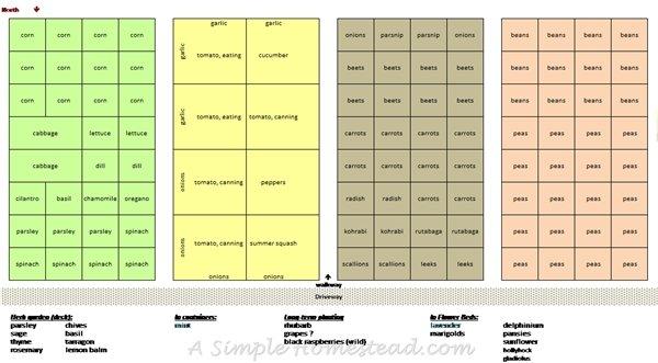 garden plan 2016 April   ASimpleHomestead.com
