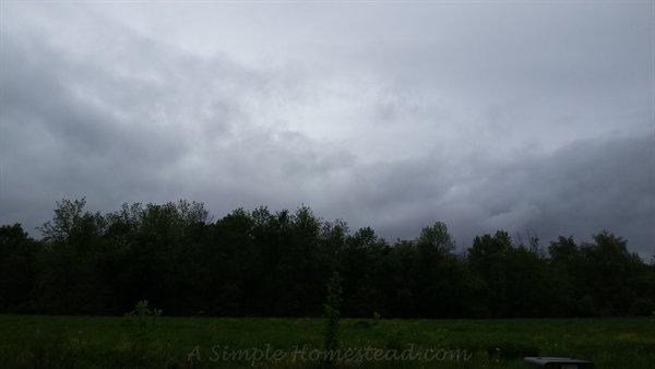 grey and gloomy weather