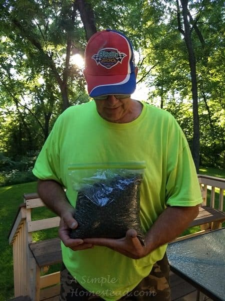 bag of Japanese beetles
