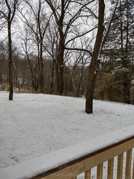 snow on Nov 9