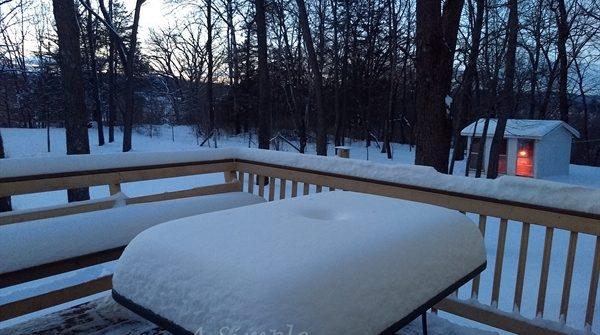 Jan 2019 snowfall