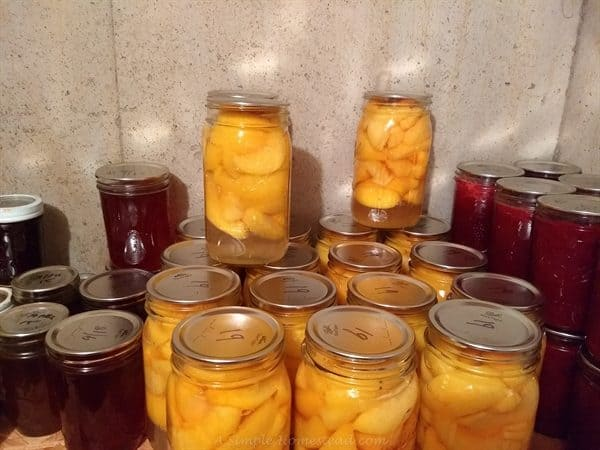 homestead update - canning peaches (and strawberry jam)