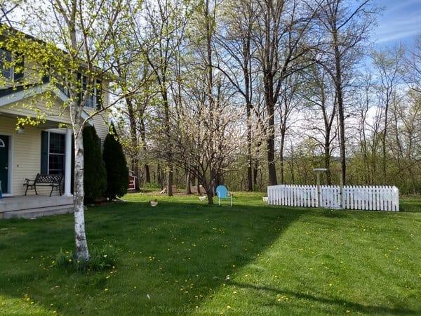 front yard garden view